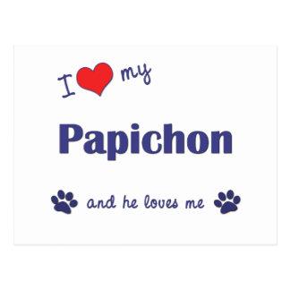 I Love My Papichon (Male Dog) Postcard