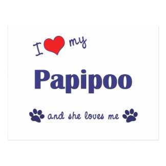 I Love My Papipoo (Female Dog) Postcard