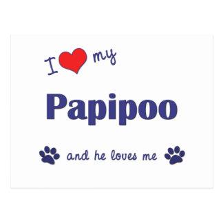 I Love My Papipoo (Male Dog) Postcard