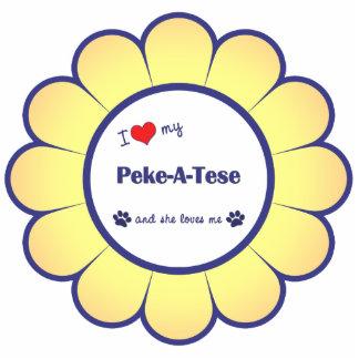 I Love My Peke-A-Tese (Female Dog) Cutout