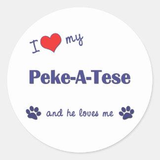 I Love My Peke-A-Tese (Male Dog) Classic Round Sticker