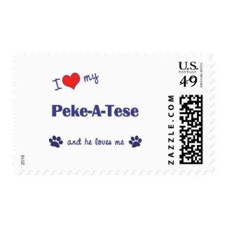 I Love My Peke-A-Tese (Male Dog) Postage
