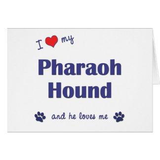 I Love My Pharaoh Hound (Male Dog) Card
