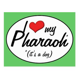 I Love My Pharaoh (It's a Dog) Postcard
