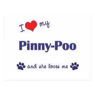 I Love My Pinny-Poo (Female Dog) Postcard