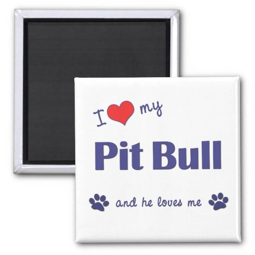 I Love My Pit Bull (Male Dog) 2 Inch Square Magnet