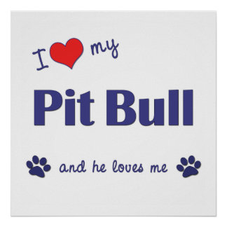 I Love My Pit Bull (Male Dog) Poster