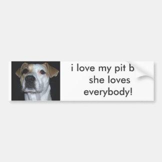 i love my pit bull she loves eve... bumper sticker