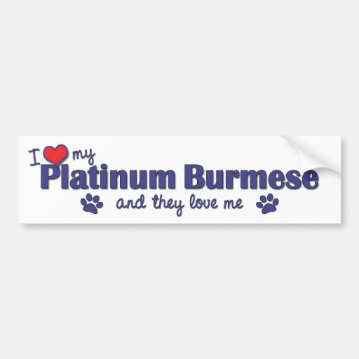 I Love My Platinum Burmese (Multiple Cats) Bumper Sticker