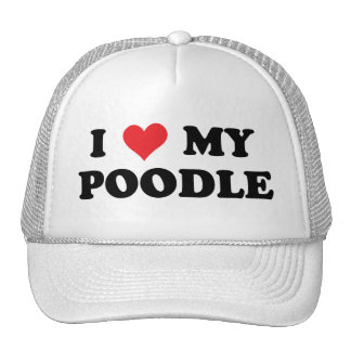 I Love My Poodle Mesh Hats