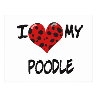 I love my Poodle Postcard