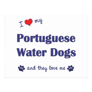 I Love My Portuguese Water Dogs (Multiple Dogs) Postcard