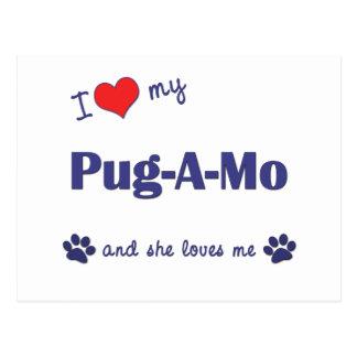 I Love My Pug-A-Mo (Female Dog) Postcards