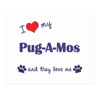 I Love My Pug-A-Mos (Multiple Dogs) Postcard
