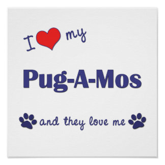 I Love My Pug-A-Mos (Multiple Dogs) Poster