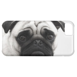 I love my Pug Case For iPhone 5C