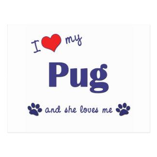 I Love My Pug (Female Dog) Postcard