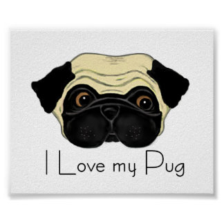 I Love my Pug Poster