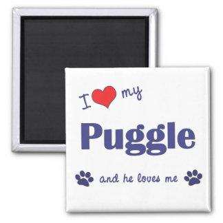 I Love My Puggle (Male Dog) Magnet