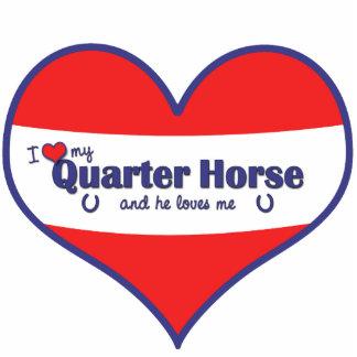 I Love My Quarter Horse (Male Horse) Cutout