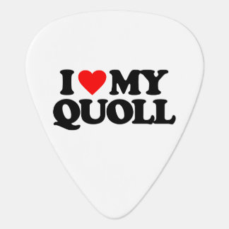 I LOVE MY QUOLL GUITAR PICK