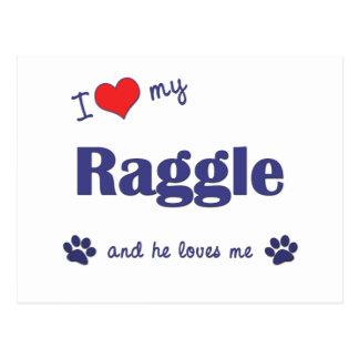 I Love My Raggle (Male Dog) Post Cards