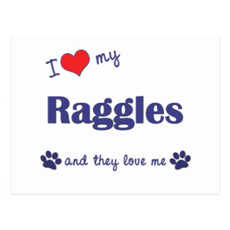 I Love My Raggles (Multiple Dogs) Postcards