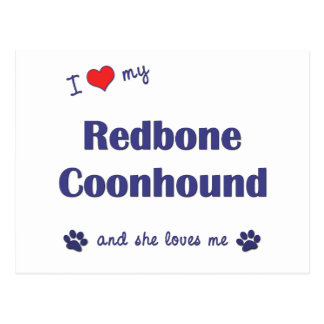 I Love My Redbone Coonhound (Female Dog) Postcard