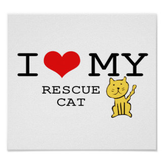I Love My Rescue Cat Poster