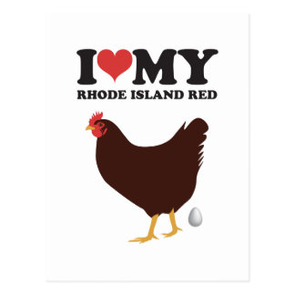 I Love My Rhode Island Red Postcard