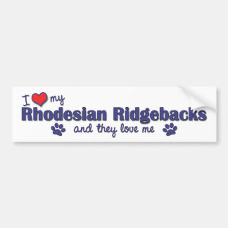 I Love My Rhodesian Ridgebacks (Multiple Dogs) Bumper Sticker