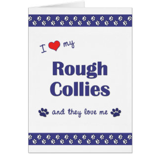 I Love My Rough Collies (Multiple Dogs) Card