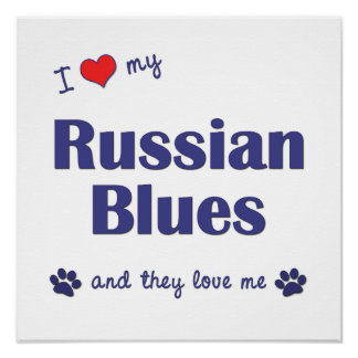 I Love My Russian Blues (Multiple Cats) Poster