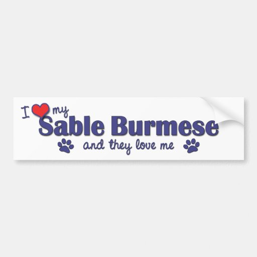I Love My Sable Burmese (Multiple Cats) Bumper Stickers
