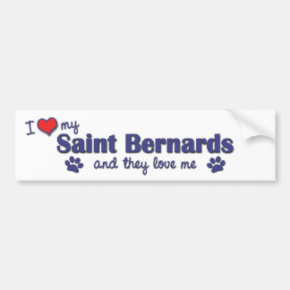 I Love My Saint Bernards (Multiple Dogs) Bumper Sticker
