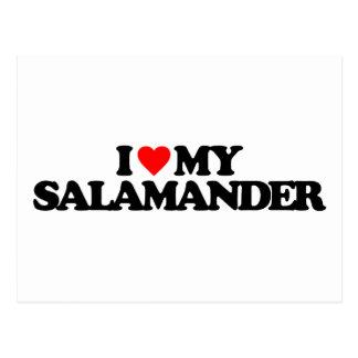 I LOVE MY SALAMANDER POSTCARD