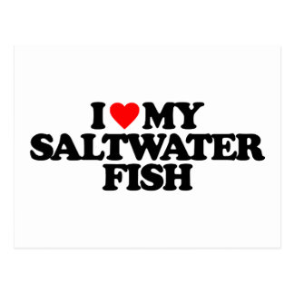I LOVE MY SALTWATER FISH POSTCARD