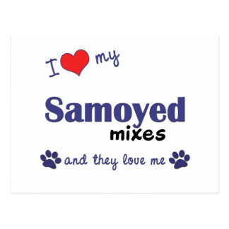 I Love My Samoyed Mixes (Multiple Dogs) Postcard