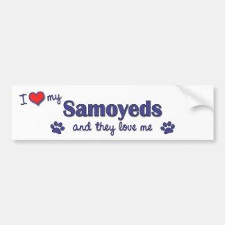 I Love My Samoyeds (Multiple Dogs) Bumper Sticker