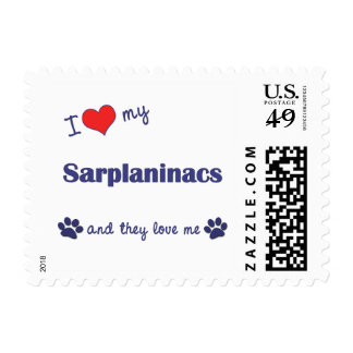 I Love My Sarplaninacs (Multiple Dogs) Postage Stamp