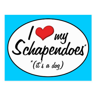 I Love My Schapendoes (It's a Dog) Postcard