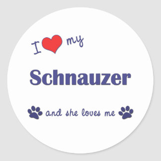 I Love My Schnauzer (Female Dog) Classic Round Sticker