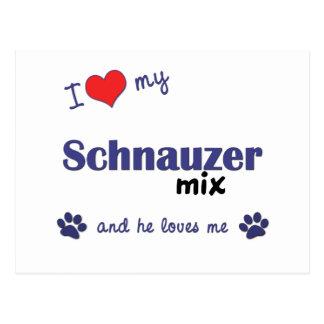 I Love My Schnauzer Mix (Male Dog) Postcard
