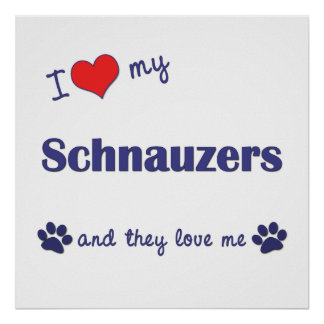 I Love My Schnauzers (Multiple Dogs) Poster