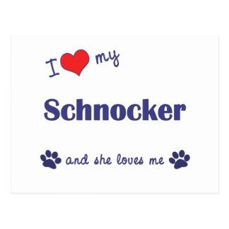 I Love My Schnocker (Female Dog) Postcard