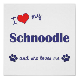 I Love My Schnoodle (Female Dog) Poster Print
