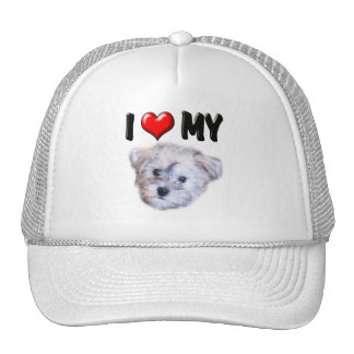I Love My Schnoodle Trucker Hat