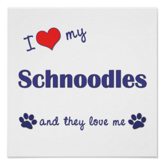 I Love My Schnoodles (Multiple Dogs) Poster Print