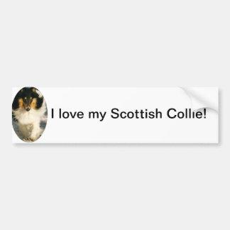 I love my Scottish Collie! Car Bumper Sticker