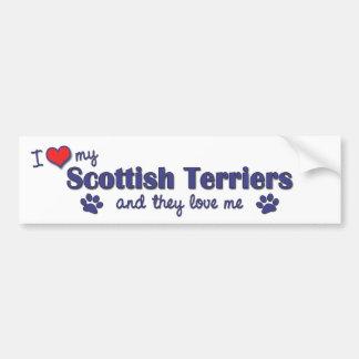I Love My Scottish Terriers (Multiple Dogs) Car Bumper Sticker